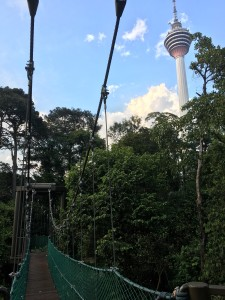 KL Tower see from Hutan Lipur Bukit Nanas