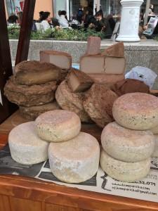 Cheeses looking very suspiciuos